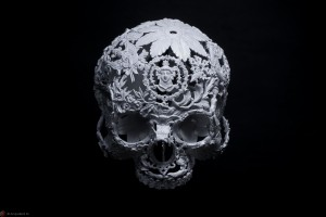 Featured Image Skull