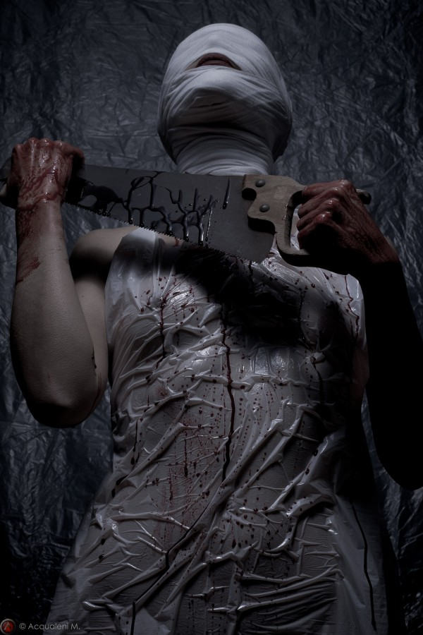 Featured Image Lady Butcher