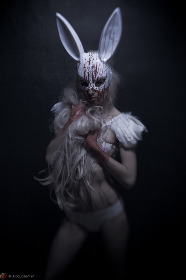 Featured Image Rabbit of Lust