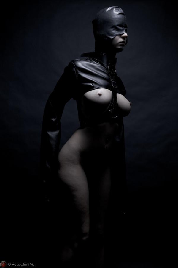 Featured Image Vipère Ledom