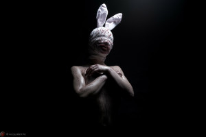 Featured Image Sweet Bunny